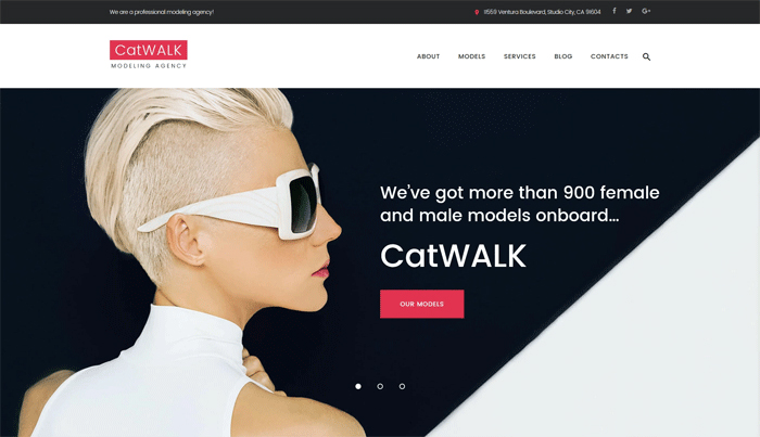 CatWalk — адаптивный WordPress шаблон для сайта модельного агентства